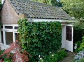 Tuinhuis Breda